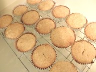 cupcakes baked